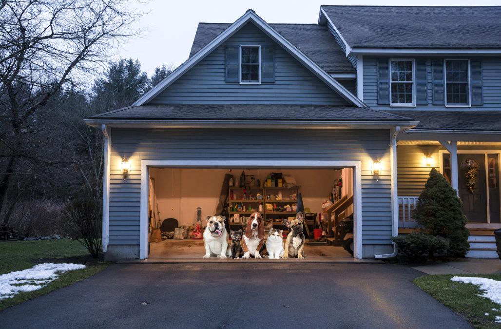 Garage Door Open Forest Security